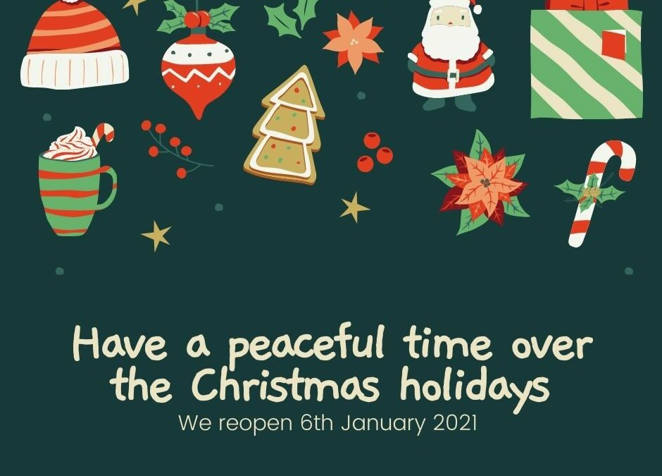 Merry Christmas, see you in 2021!